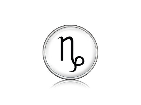 Zodiac Sign - Capricorn / Silver
