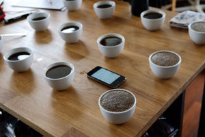 Q Arabica Combo Training Level 1