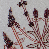 Vervain Hand Embroidery