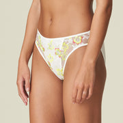 Amber Lace Rio Briefs Yellow Tonic