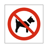 No Dogs Symbol Sign | Safety-Label.co.uk