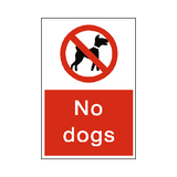 No Dogs Sticker - Safety-Label.co.uk