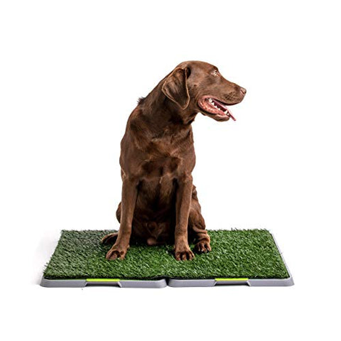 Silver Paw Potty Patch Dog Potty  Replaces Wee Wee Pads  The Best Pet Turf Potty Training Tool  Works For Puppies &Amp; Adult Dogs  For Big Dogs