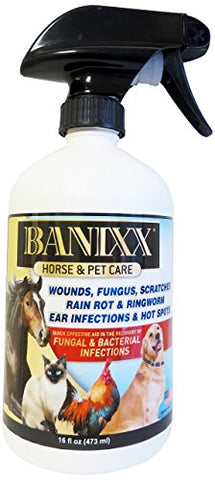 Banixx Horse And Pet Care 16 Oz