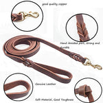 Dog Care Training Lead Handmade Braided 8.5 Foot Leather Pet Leash, Large Size, Brown