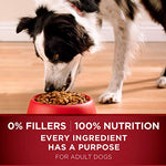 Purina One Smartblend True Instinct Natural With Real Turkey &Amp; Venison Adult Dry Dog Food - 27.5 Lb. Bag