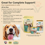 All-In-One Dog Soft Chew Supplement, Skin &Amp; Coat Health, Joint Support, Digestive Health, Vitamin And Mineral Support, Overall Health Boost For Your Dog, Made By Naturvet