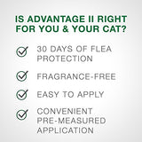 Bayer Animal Health Advantage Ii Flea Prevention Large Cats, Over 9 Lbs,  2 Doses - 81568251