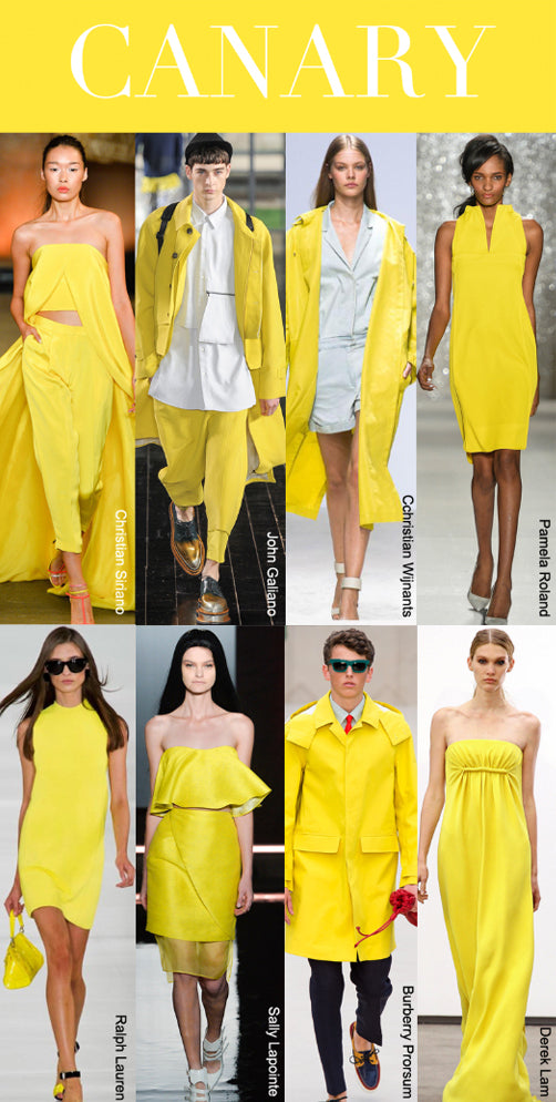 Trend Council Spring/Summer 2014 Canary