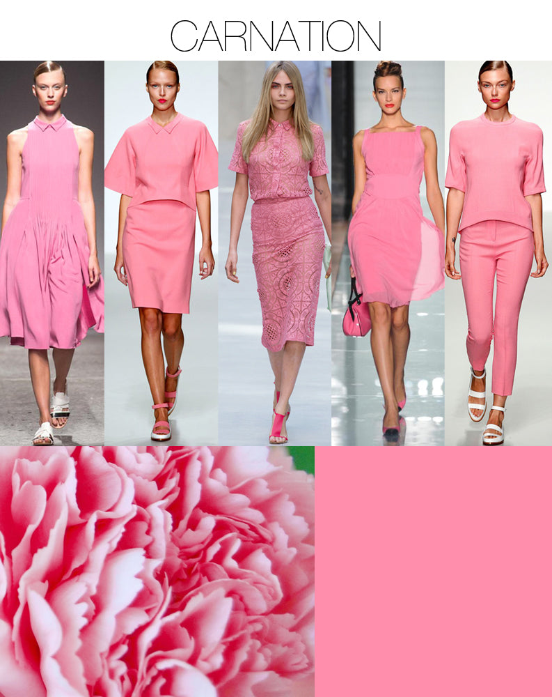 Trend Council Spring/Summer 2014 Carnation