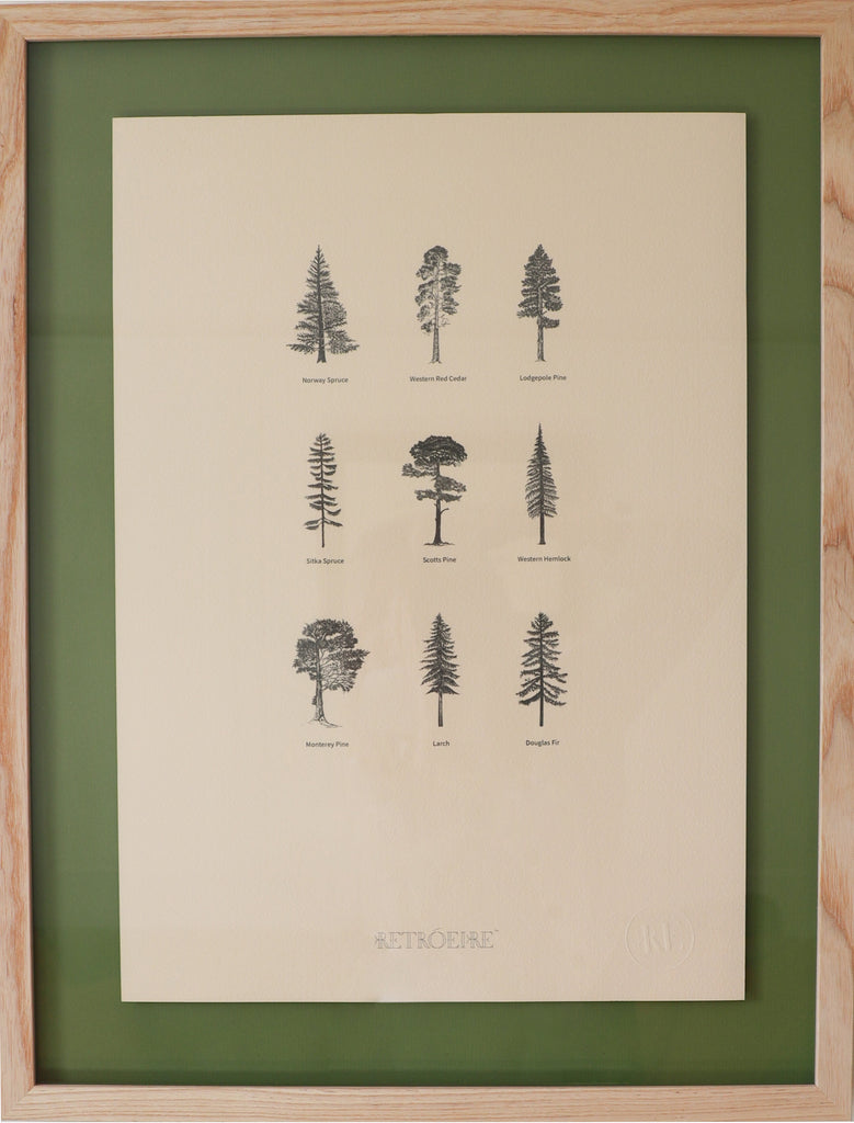 Irish Forest Print
