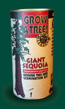 Tree Seed Grow Kit - Giant Sequoia (TSGK - 0007)