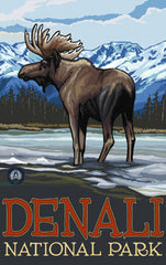 Denali National Park / Denali Brown Moose Poster 2 • PAL-3030