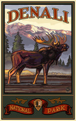 Denali National Park / Majestic Moose Poster • PAL-3038