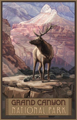 Grand Canyon National Park/Elk Poster • PAL-0381
