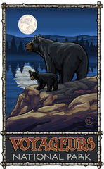 Voyageurs National Park/Black Bear With Cub Poster • PAL-0449
