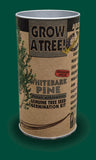 Tree Seed Grow Kit - White Bark Pine (TSGK - 0011)
