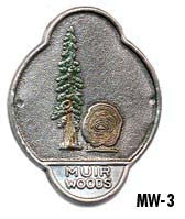 MW3 - MUIR WOODS - REDWOOD TREES