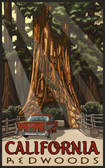 California Redwoods National Park / Car Through Tree Poster • PAL-1132