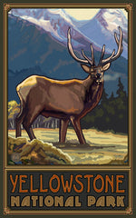Yellowstone National Park/Deer Poster • PAL-0117