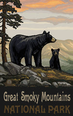 Great Smoky Mountains National Park / Black Bear And Cub Poster • PAL-1278