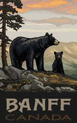 Banff National Park/2 Black Bears Poster • PAL-2515