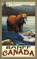 Banff National Park/Brown Bear With Fish Poster • PAL-2516