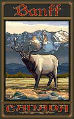 Banff National Park/Lone Elk Poster • PAL-2519