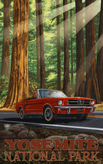 Yosemite National Park / Vacation In Red Car Poster • PAL-2587