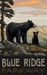 Blue Ridge Parkway / Bear And Cub Poster • PAL-2595
