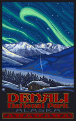 Denali National Park / Aurora Poster • PAL-3029