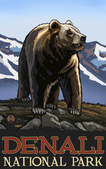 Denali National Park / Bear On All Fours • PAL-3034