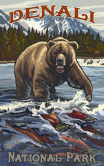 Denali National Park / Bear With Red Salmon Fish • PAL-3036