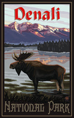 Denali National Park / Majestic Moose 2 • PAL-3039