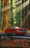 California Redwoods National Park / Red Car Driving Poster • PAL-3101