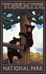 Yosemite National Park / Black Bear Cubs In Tree Poster • PAL-3557