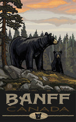 Banff National Park/2 Black Bears Alternate Poster • PAL-3940
