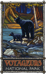 Voyageurs National Park/Bear With Cub By Stream Poster • PAL-0450