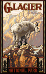 Glacier National Park / White Mountain Goat Poster • PAL-0453