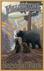 Yellowstone National Park/Bear And 2 Cubs Poster • PAL-0050
