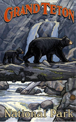 Grand Teton National Park / 2 Bears On Log Bridge Poster • PAL-0991