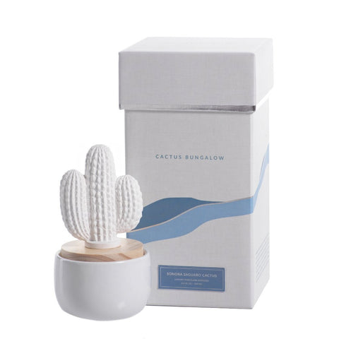 Zodax Objects Porcelain Sonora Saguaro Cactus Diffuser