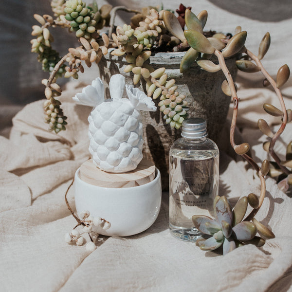 Zodax Objects Porcelain Mojave Barrel Cactus Diffuser