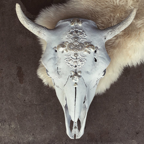 Crystal Coves Cow Skull - Child of Wild  - 1