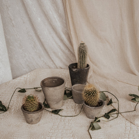 Homart Objects Petite / Moss Grey Moss Grey Rustic Terracotta Pots