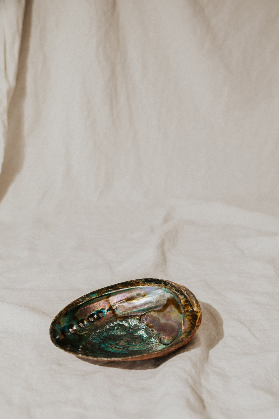 om imports Objects Treasured Things Abalone Offering Bowl
