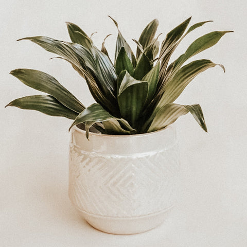 Bloomingville Objects Pearl Embossed Stoneware Planter
