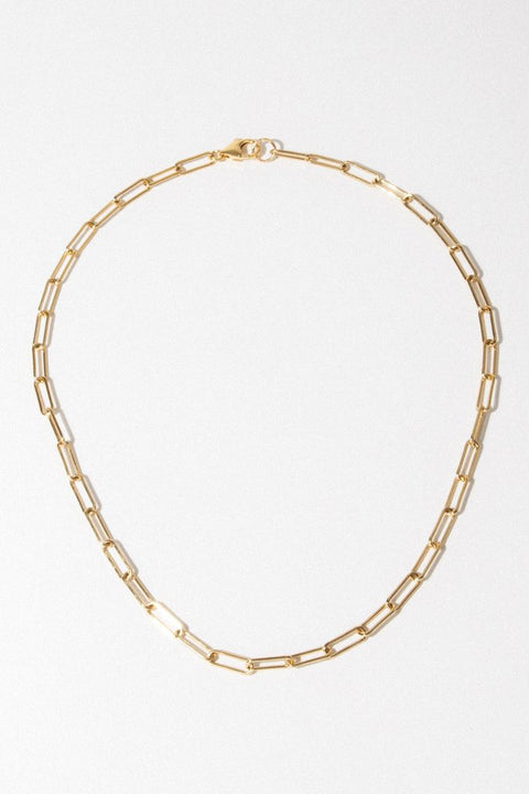 Goddess Jewelry Gold / 16 Inches Link Necklace