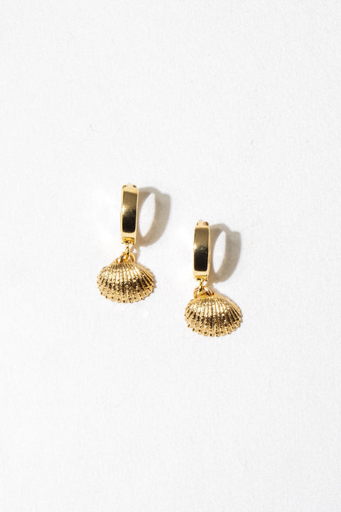 Dona Italia Jewelry Gold Coquille Earrings