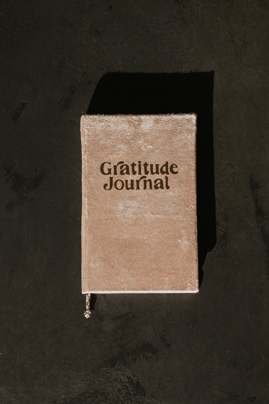 Printfresh Objects Blush / FINAL SALE Gratitude Velvet Journal